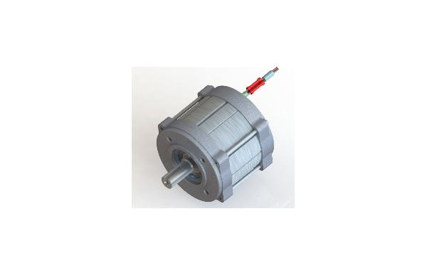 Synchronous motor DSMG
